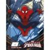 Caderno Brochura Cd Quadriculado 1x1cm Spider-man - 40 Folhas Pack C/10