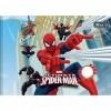 Caderno Brochura Cd Linguagem Spider-man - 40 Folhas Pack C/10