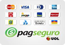Banner com todas as formas de pagamentos disponíveis através do Pagseguro da Uol